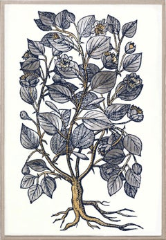Historical Botanical 4, Gold Leaf, Framed