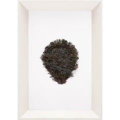 Victoria Mounted Feathers, small, No. 7, framed