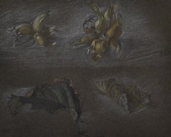 Hazelnuts and Leaves - Chalk drawing by British Arts & Crafts Artist