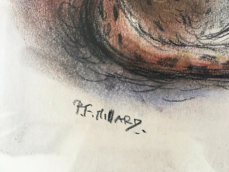 "PATRICK FERGUSON MILLARD, RBA (1902-1977)  ""Cheeta""  Signed Coloured chalks  41.5 by 35.5 in.,  16 ¼ by 14 cm. (frame size 64 by 56.5 cm., 25 ¼ by 22 ¼ in.)  Exhibited: London, Brook Street Art Gallery  Pat Millard was born in Aspatria, Cumbria,"