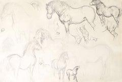 Studies of Horses - 19th century British pencil drawing of H W B Davis
