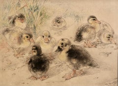 Ducklings, 1882 British coloured chalk drawing by William Huggins