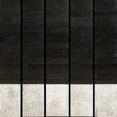 Svetlana Shalygina. Black & White Crackle. Textural Original Abstract Painting.
