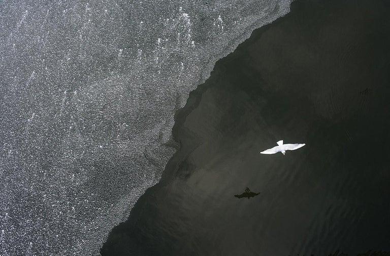 Marcin Ryczek Black and White Photograph - Reflection