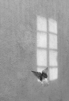 Secret Window - Contemporary Minimalist Symbolic Photography, Black And White