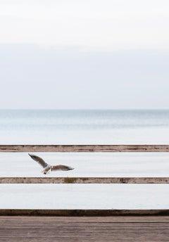 Horizons - Contemporary Minimalist And Symbolic Photography, Sea View