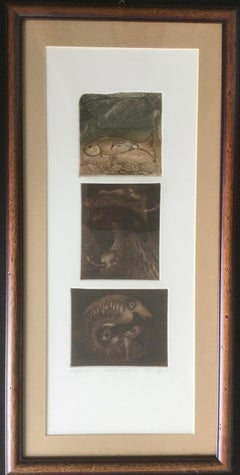 Fish Triptych - XX century, Figurative Etching Aquatint Print, small edition 7/X
