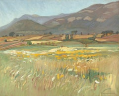 """""""The Meadow Beach"""", Mountainous Rural Impressionist Landscape Oil Painting"""