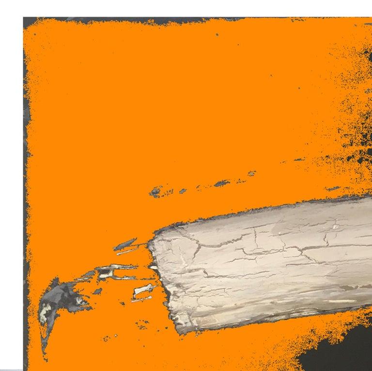 Bone - Abstract Print by Dal Henderson