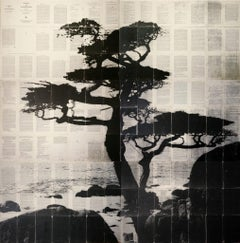 Mike Saijo, Cypress, Encaustic on Toner on Book Pages