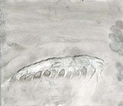 Anomalocaris Mandable