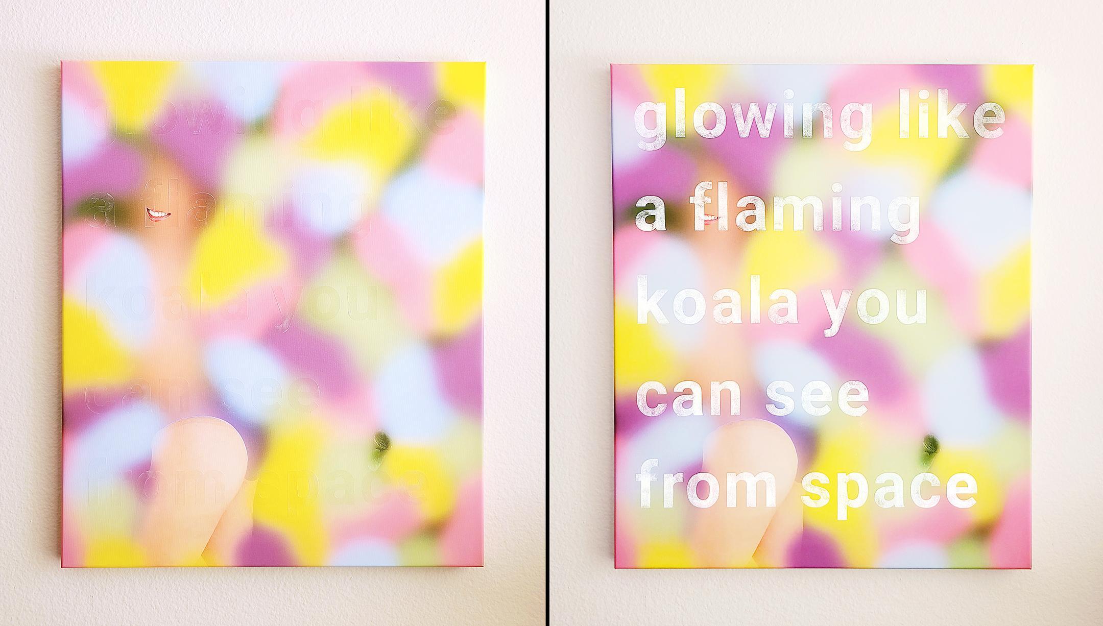 Flaming Koala