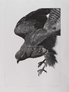 No pounce without prey by David A. Hunt