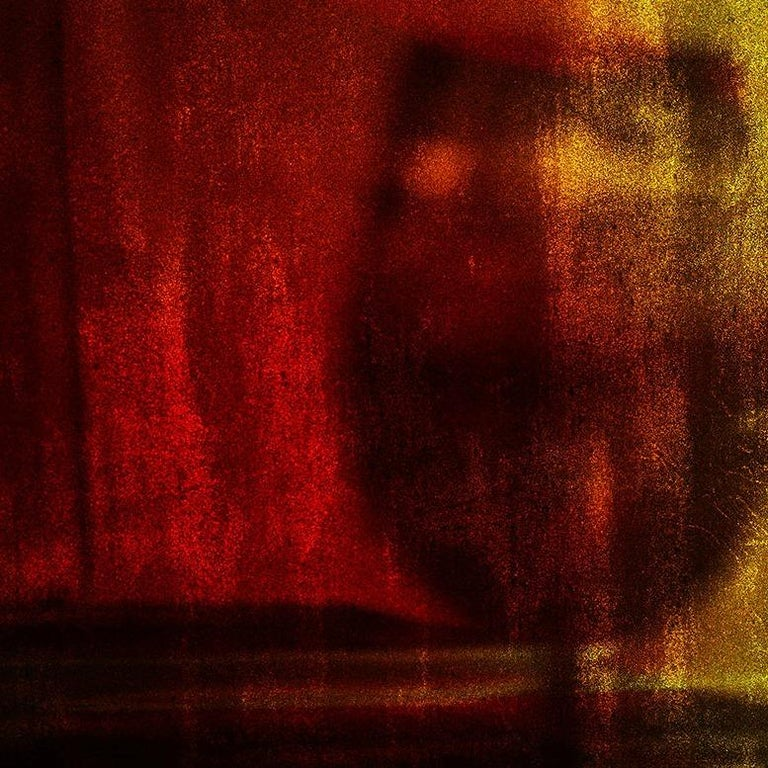 The Only Guest, Vitalii Ledokollov, Abstract Print, Color Photography, Red Brown For Sale 1