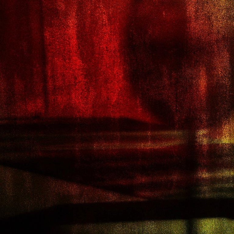 The Only Guest, Vitalii Ledokollov, Abstract Print, Color Photography, Red Brown For Sale 3