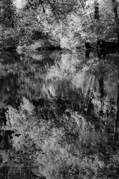 Fall Reflections in Black and White II