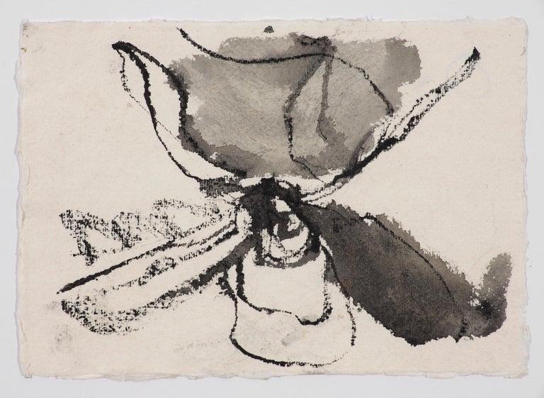 Quarantine Drawings 10, 4, 3 - Contemporary Art by Anastasia Pelias