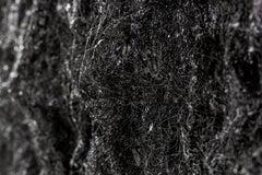 Revelation, 21st century, modern abstract, black and white