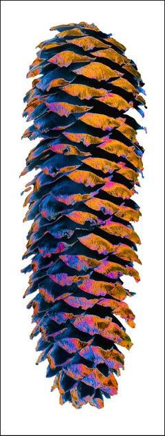 The sparkling alp icons Nr.47, 2015, 150 x 57 cm, Ed. 8