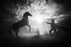 Rearing at Sunset, Black and White Photography