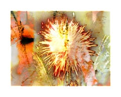 Explosure, #03 by Tom & Lois White, archival pigment print, 52x40in