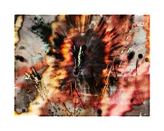 Explosure, #11 by Tom & Lois White, archival pigment print, 52x40in