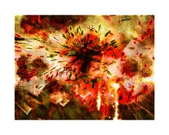 Explosure, #12 by Tom & Lois White, archival pigment print, 52x40in
