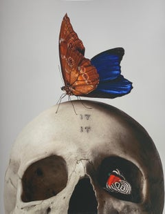 """""""Skull & Butterfly"""" Original Fine Art Print Edition 23 of 25 by Mario Kroes"""