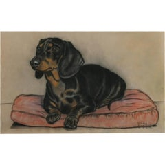 Gladys Emerson Cook 'Portrait of a Dachshund' Pastel Dog Drawing on Paper