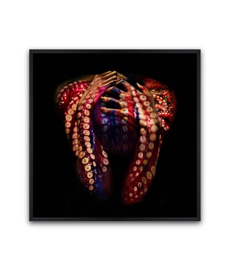 Octopussy 07 Original fine art photography Edition of 10 by Giuliano Bekor For Sale 1