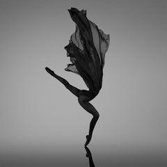 No Title (No 44) Photography Edition 4/28 36x36 inch by Yevgeniy Repiashenko