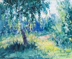 Soleil sur les Branches
