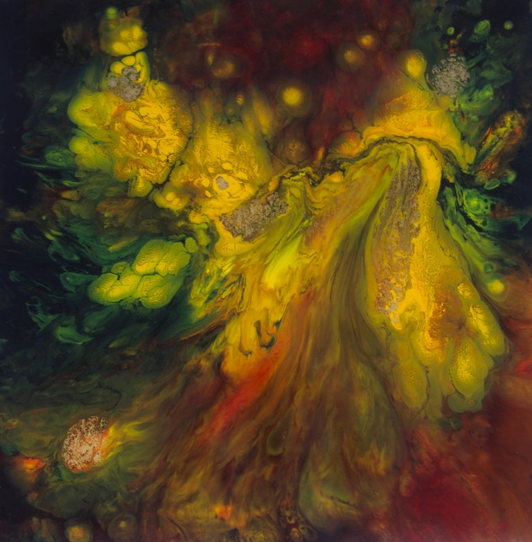 Zdenka Palkovic Abstract Painting - Fierté