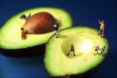 Avocado Skating - 21st Century, Contemporary, Miniature Photography on Plexi
