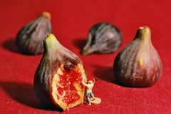 Figs - 21st Century, Contemporary, Miniature Photography on Plexi