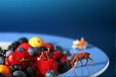 Fruit Plate - 21st Century, Contemporary, Miniature Photography on Plexi