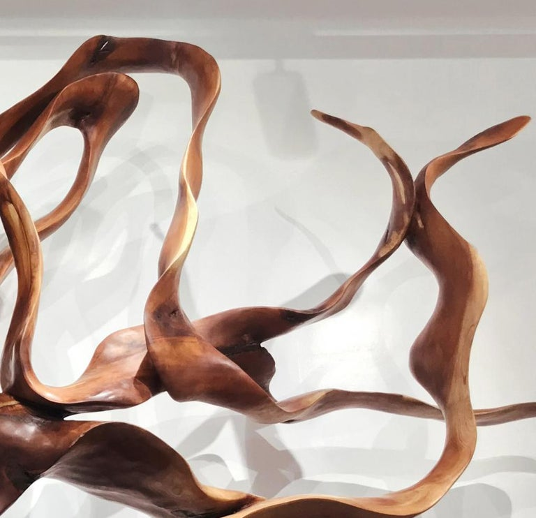 Labyrinth - 21st Century, Contemporary, Abstract Sculpture, Mahogany Wood, Roots For Sale 4