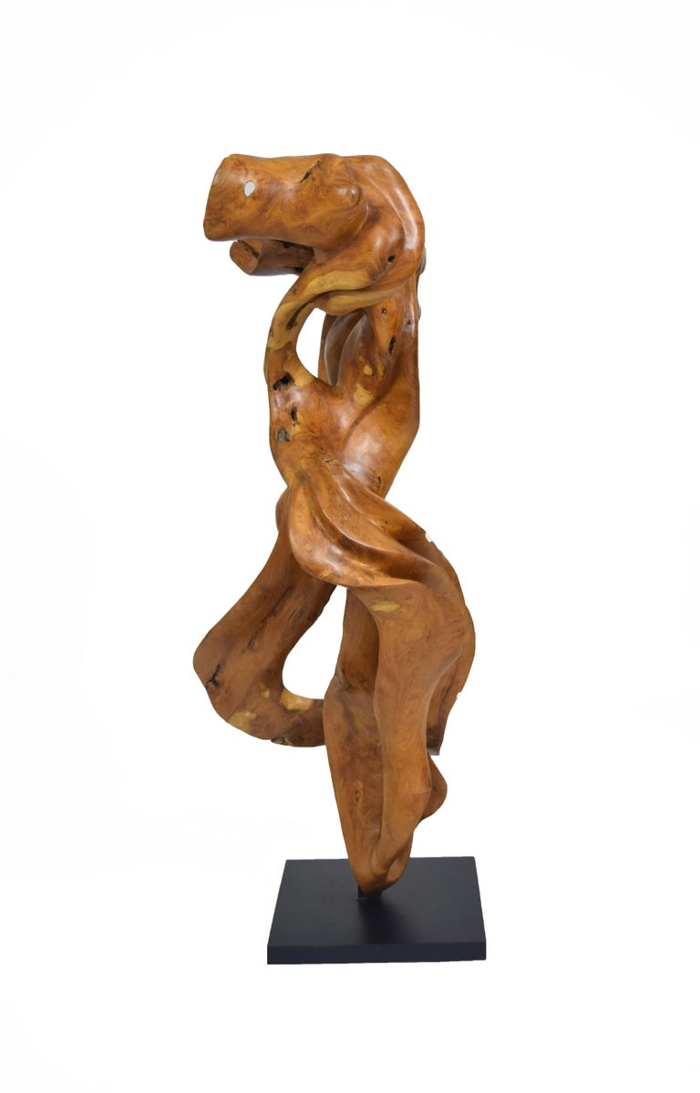 Esperança - 21st Century, Contemporary, Abstract Sculpture, Teak Wood, Roots For Sale 1