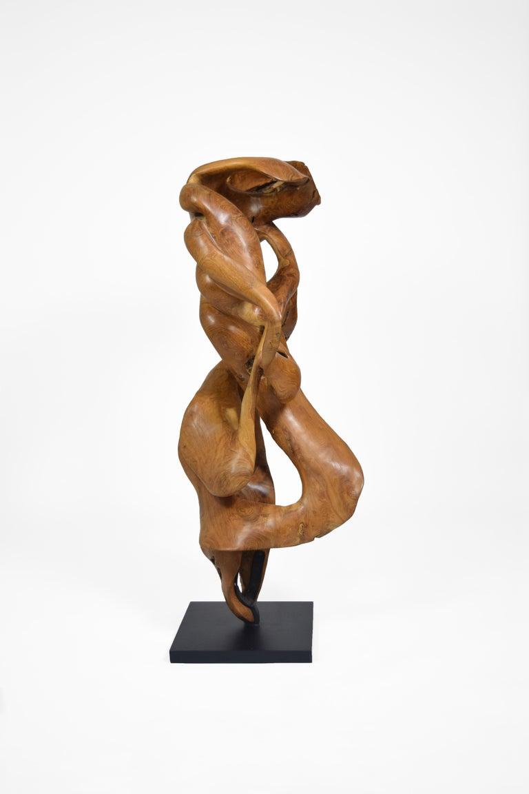 Esperança - 21st Century, Contemporary, Abstract Sculpture, Teak Wood, Roots For Sale 3