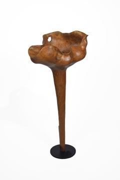 Loto - 21st Century, Contemporary, Abstract Sculpture, Teak Wood, Roots