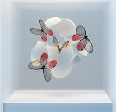 Impact 141 - 21st Cent, Contemporary, Installation, Mixed Media, Butterfly, Egg