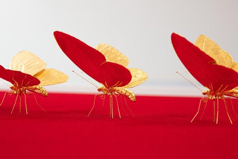 Metamorphosis Red II - 21st Century, Contemporary Figurative, Golden Butterflies For Sale 2
