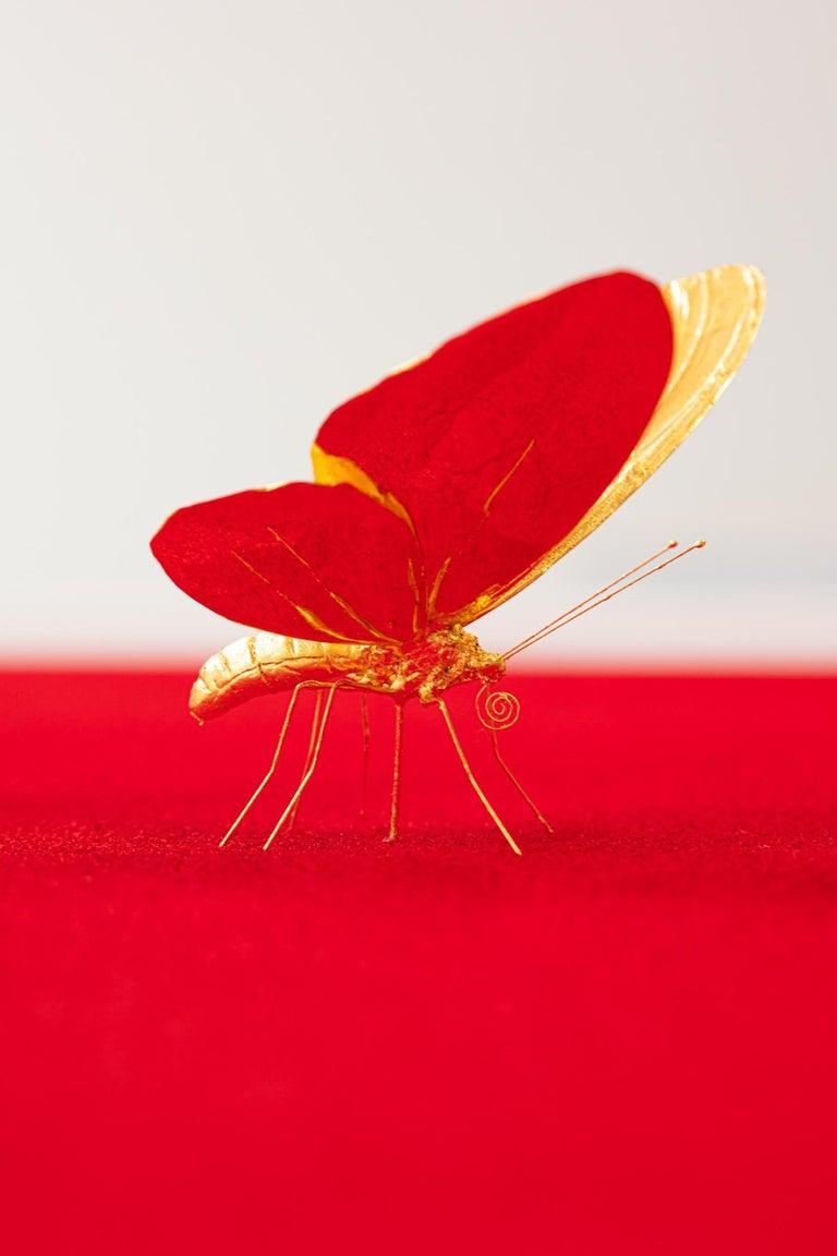 Metamorphosis Red II - 21st Century, Contemporary Figurative, Golden Butterflies For Sale 3