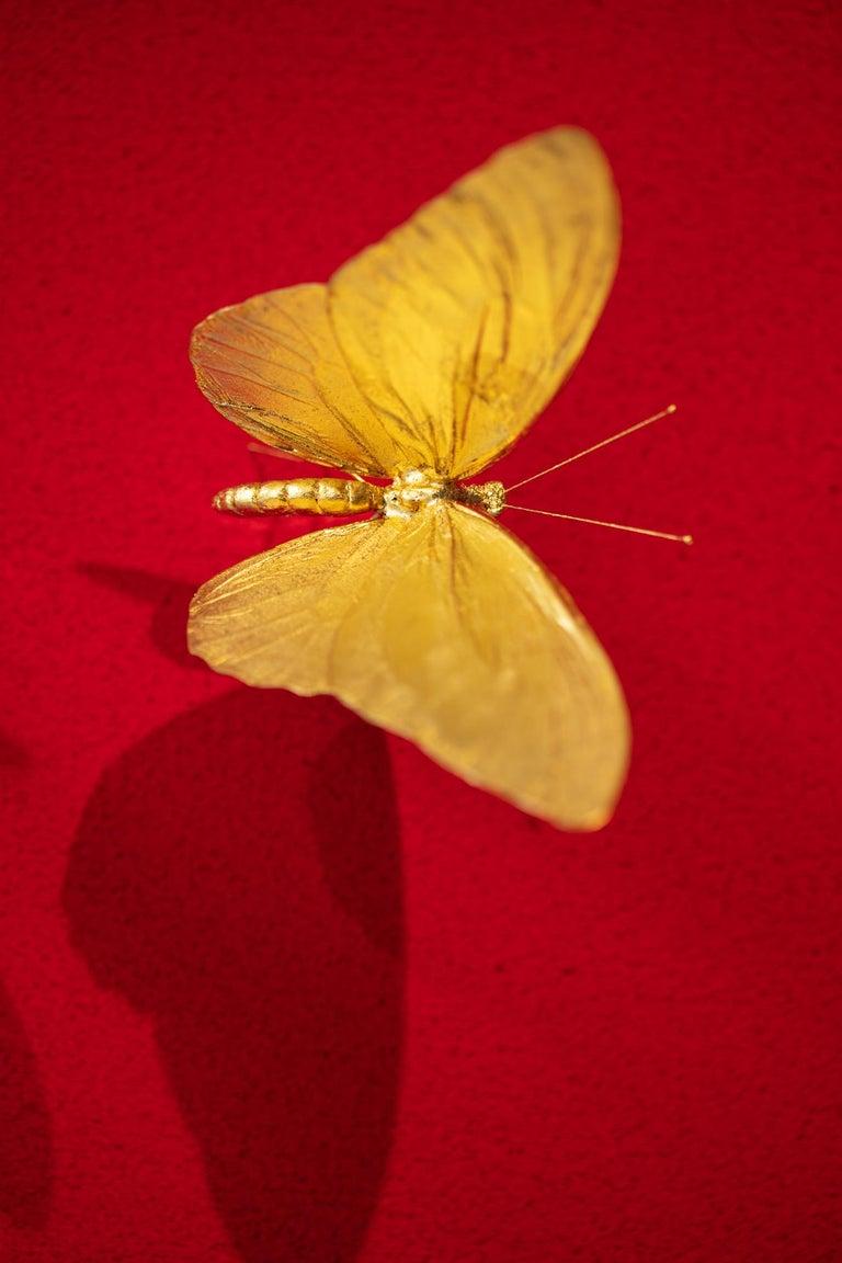 Metamorphosis Red II - 21st Century, Contemporary Figurative, Golden Butterflies For Sale 7