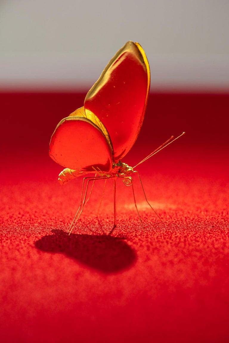 Metamorphosis Red II - 21st Century, Contemporary Figurative, Golden Butterflies For Sale 8