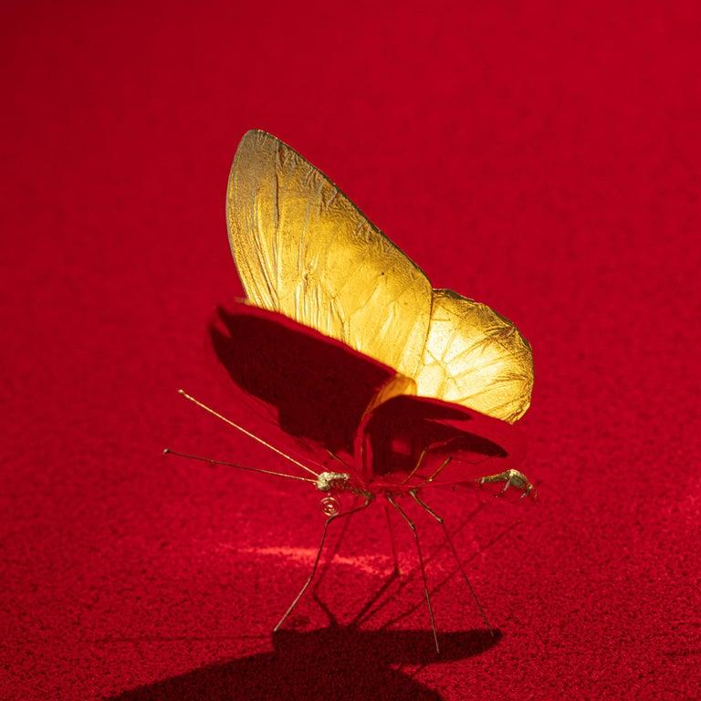 Metamorphosis Red II - 21st Century, Contemporary Figurative, Golden Butterflies For Sale 12