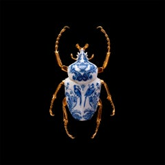 Goliath Beetle Closed - 21st Century, Contemporary, Figurative, Print, Insect