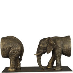 Passaggio Elefanti