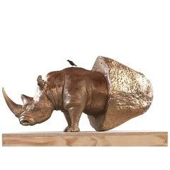 Rhino Stone