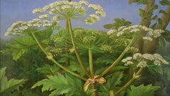 Umbellifers - Annelies Jonkhart, 21st Century Contemporary Oil Painting